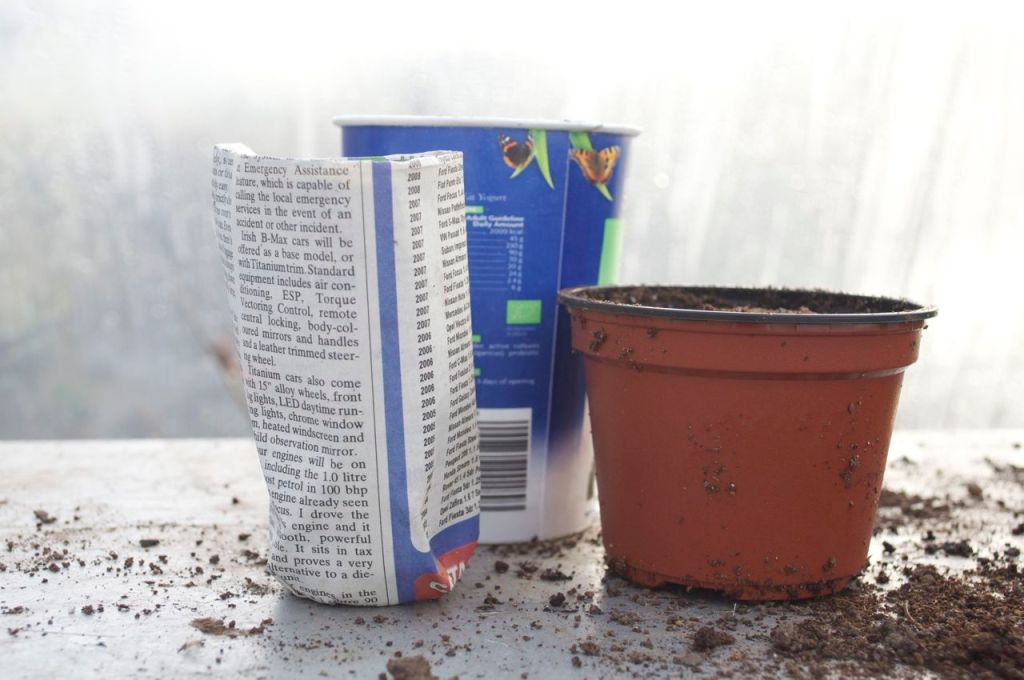 Recycle yogurt pots, make pots from newspaper and re-use old flower pots